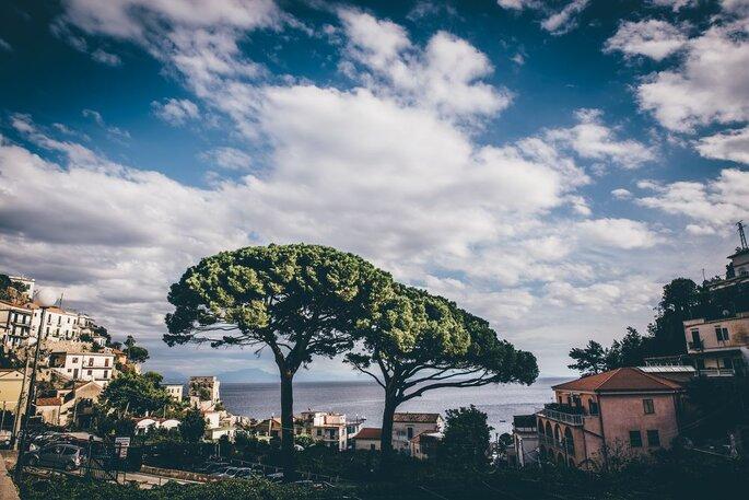 Image: Gaetano Clemente Photography