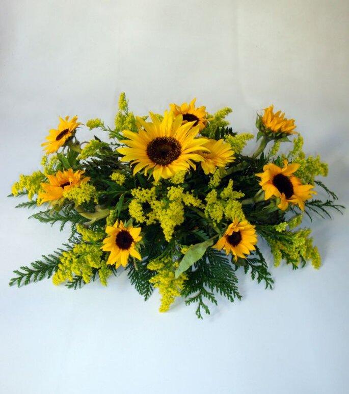 flora santa clara 2