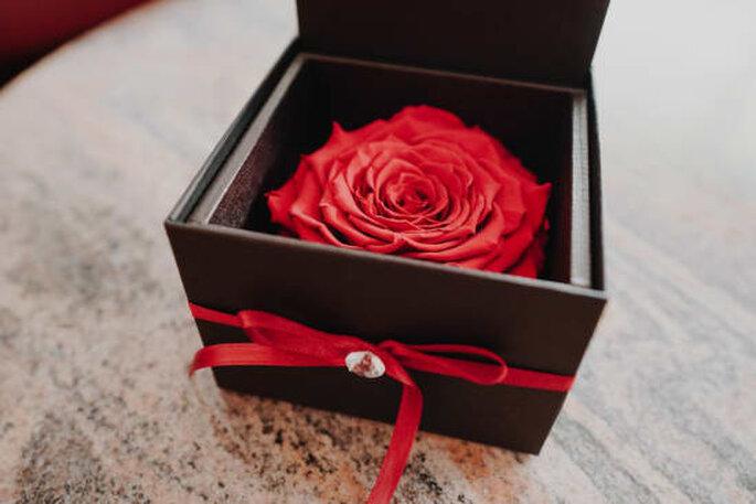 Infinity Rosen, die für die ewige Liebe stehe