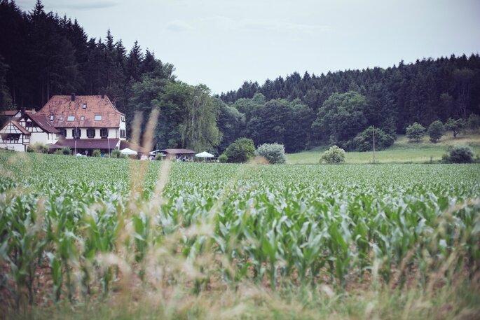 Mühle in freier Natur