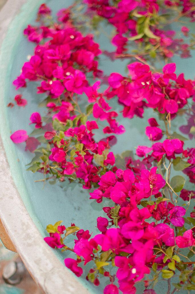 Rosa intenso - Aaron Delesie Photographer