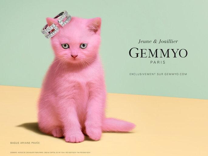Photo : Gemmyo