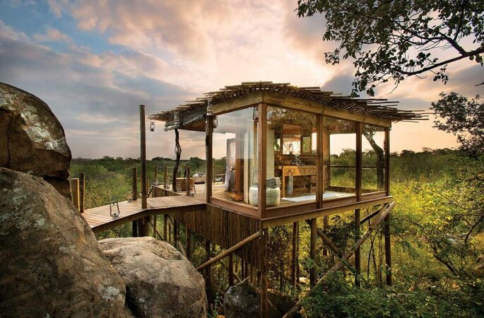 Ivory Tree House