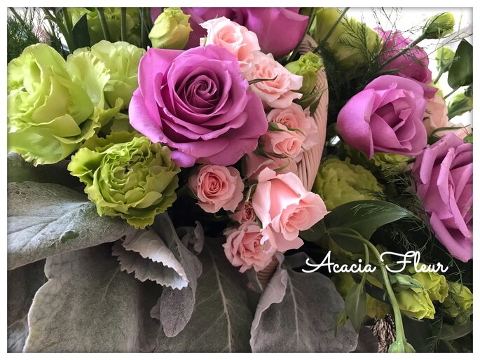 Accia Fleur