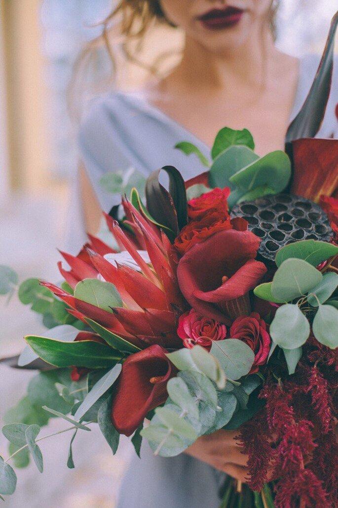 Протея. Fleur de Vanille