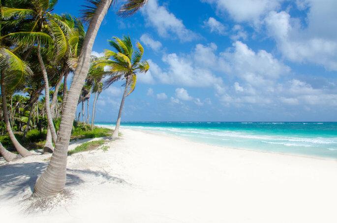 Logitravel - agence de voyages en ligne- plage à cuba avec sable blanc, palmier et océan pour une lune de miel exceptionnelle