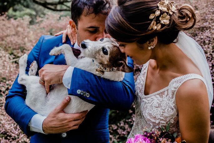 Pet no casamento