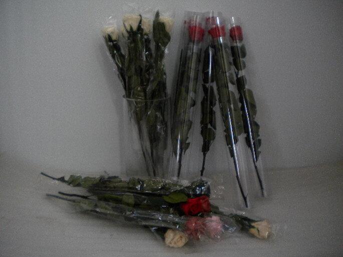 Rose stabilizzate con gambo - Il Numero Verde SAS
