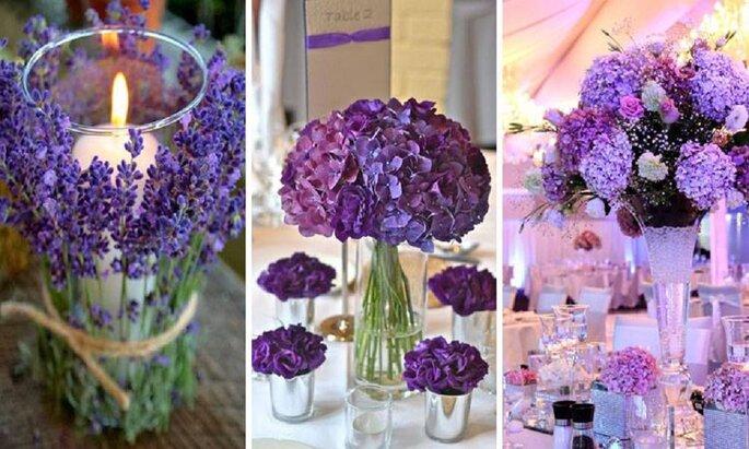 Foto: FlowersCol