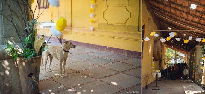 Photo: ShotStories by Varun Suresh.