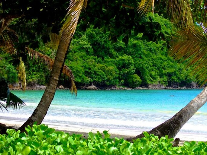 Traumhafte Strände und eine atemberaubende Natur erwarten Sie auf Ihrer Hochzeitsreise in der Karibik. Foto: Jörg Henkel Hamburg / pixelio