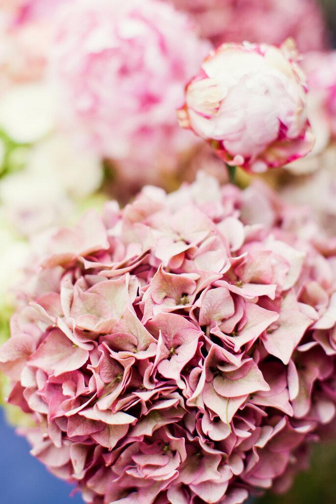 Foto via Shutterstock: aprilante