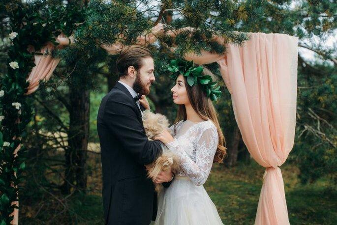 Fotógrafo de bodas Dmitry Pavlov