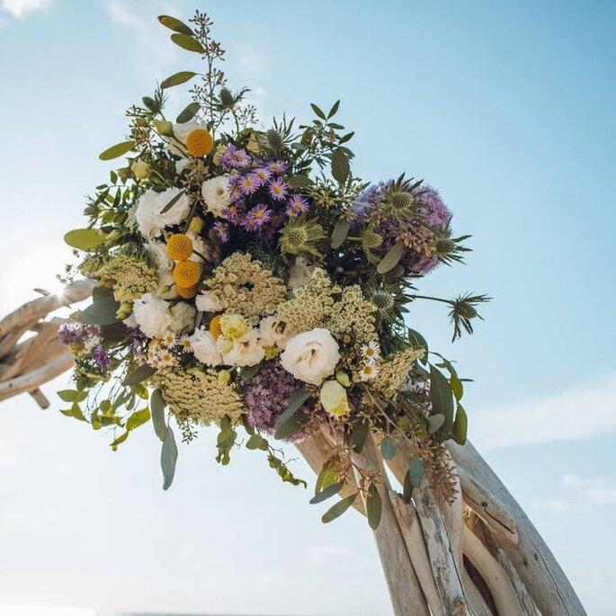 Atelier Fior d'Alisu - Fleurs mariage - Corse-du-Sud