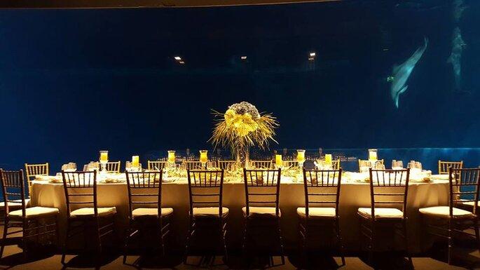 La spettacolare cena presso l'Acquario di Genova - Foto via Facebook.comLoveMeInItaly