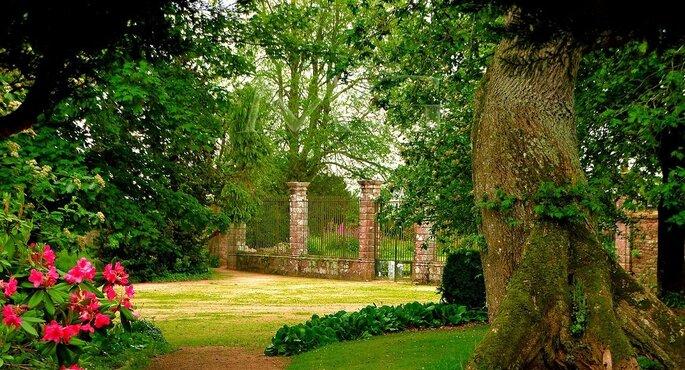 Un parc où organiser votre cérémonie laïque de mariage