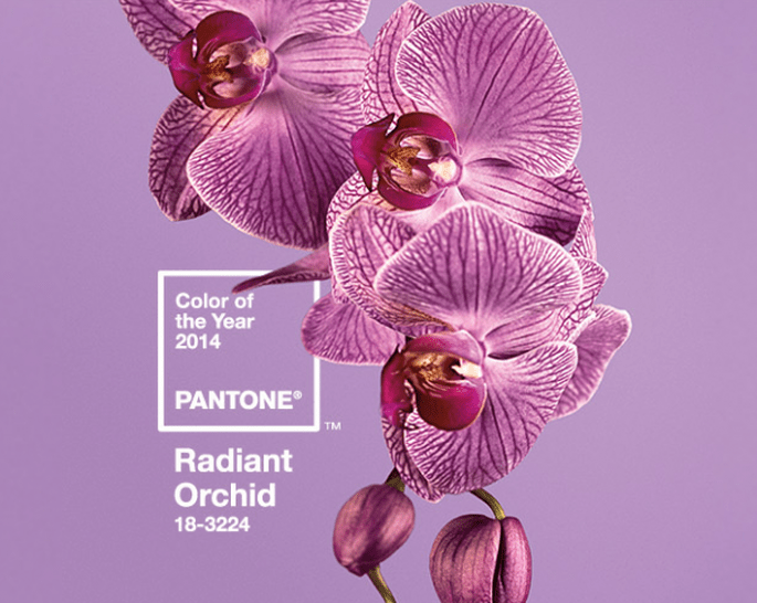 Pantone presenta el color del año 2014 para bodas: Orquídea Radiante