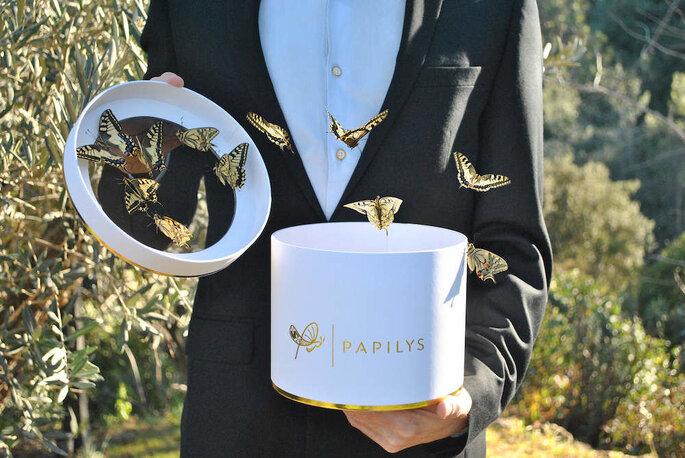 Papilys