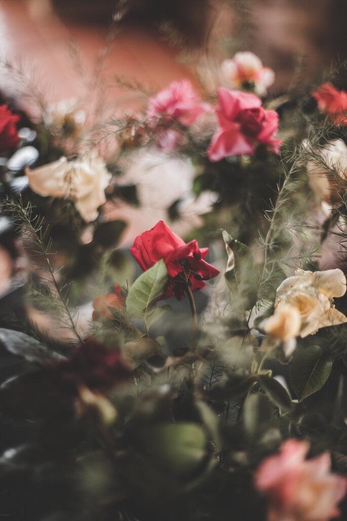 Photo : Moonrise Photography