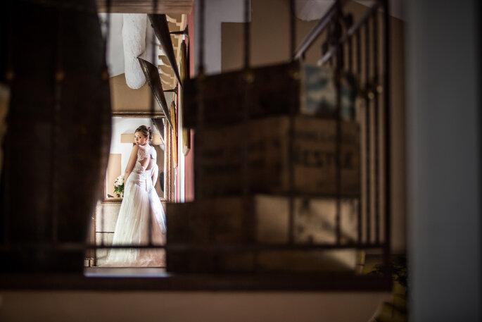 DavidZ Photographe