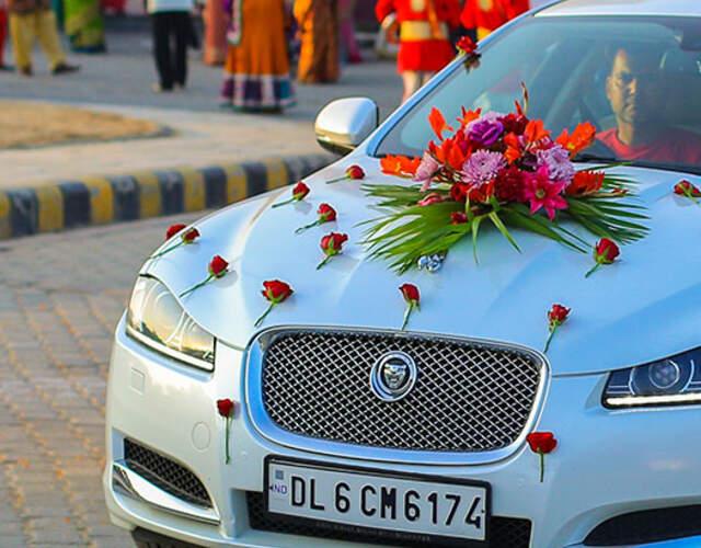 Wedding cars & buses in Punjab
