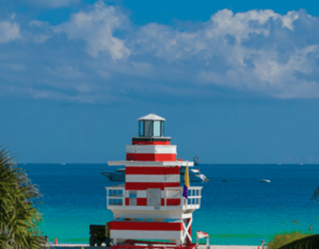 Providers in Florida