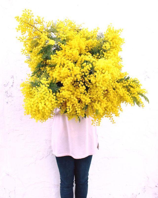 Loreak Espai Floral