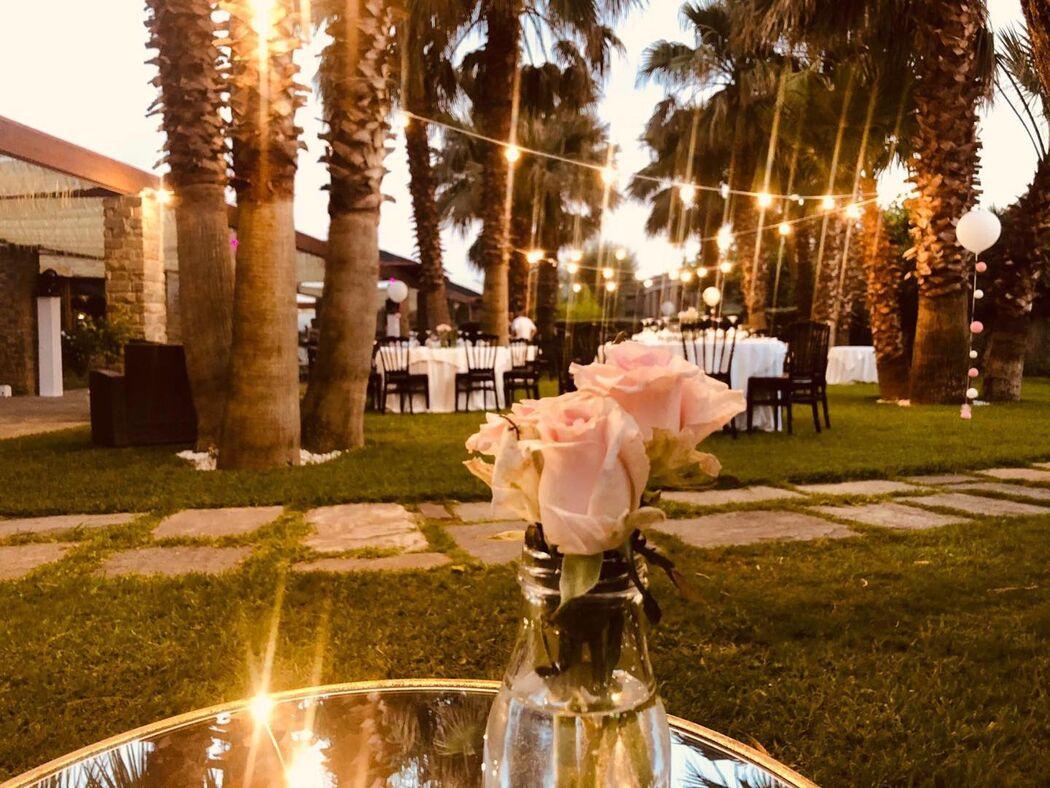 Isola Verde Restaurant