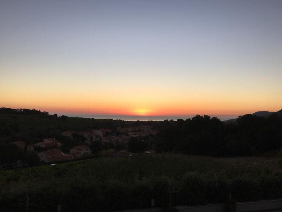 L'Amphore de Collioure