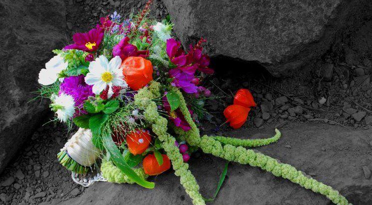 Blumen Anna Sturm