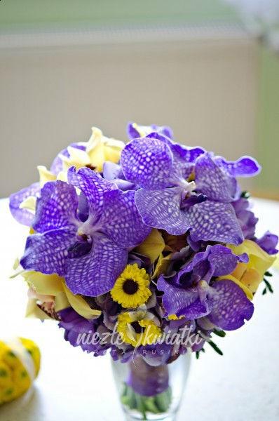 Niezłe Kwiatki Dorota Rusiniak