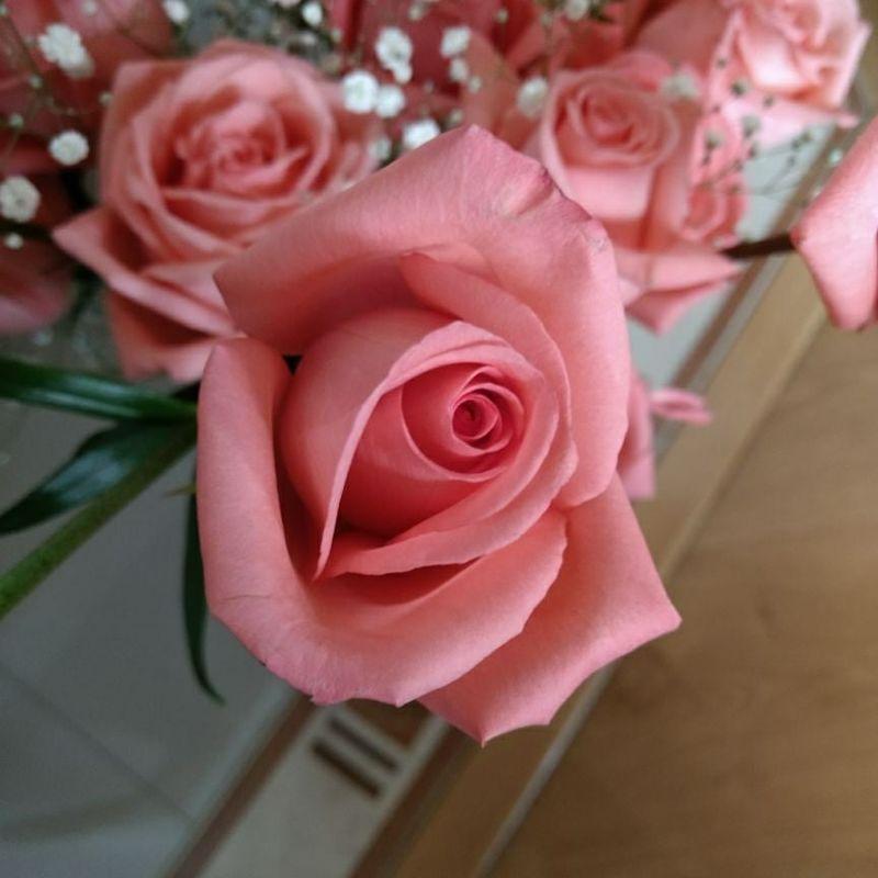 Floristeria Momentos Flores y Eventos