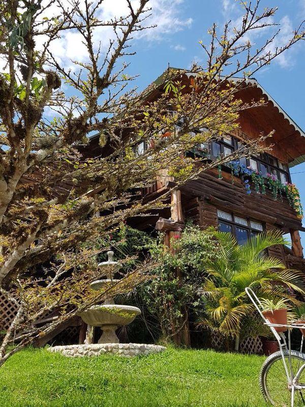 D Palma Lodge