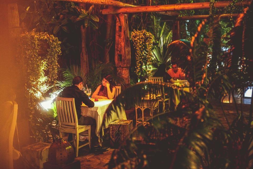 Jardim do Alchymist