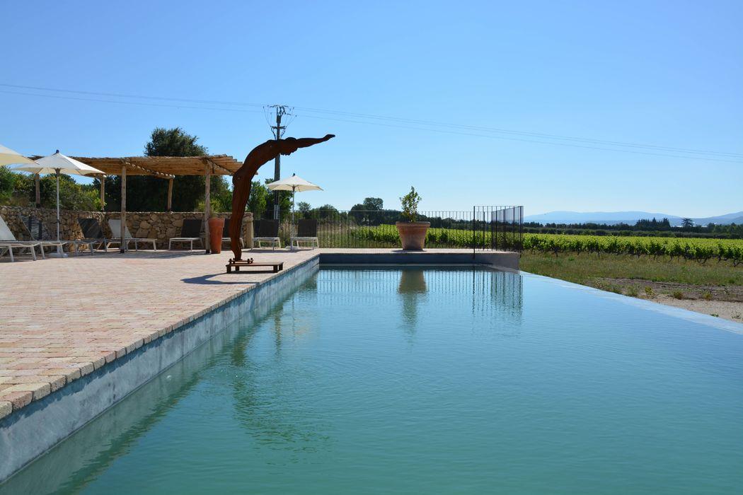 Une piscine entre vignes et oliviers au Domaine des Peyre