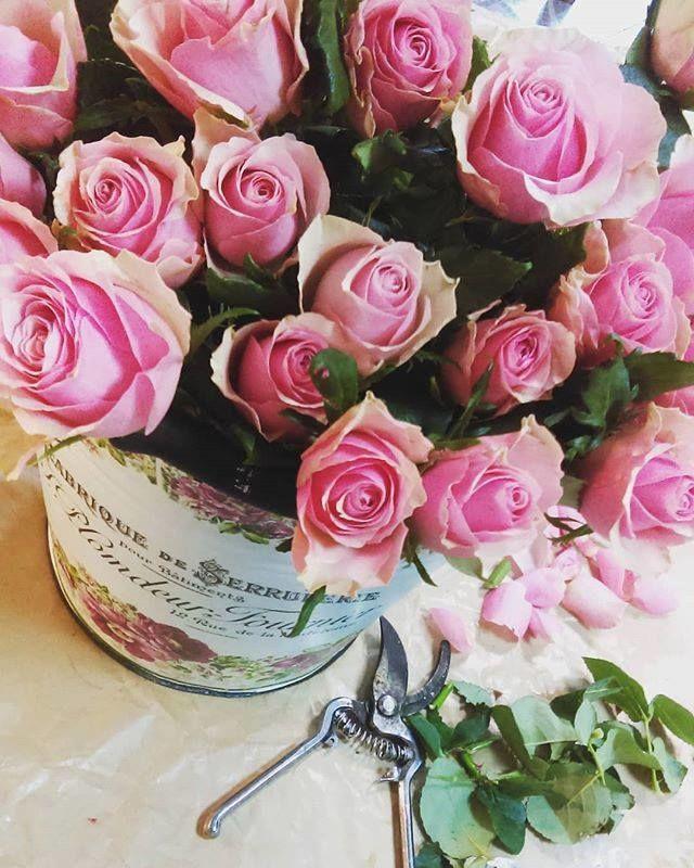 Kwiaty w Mieście