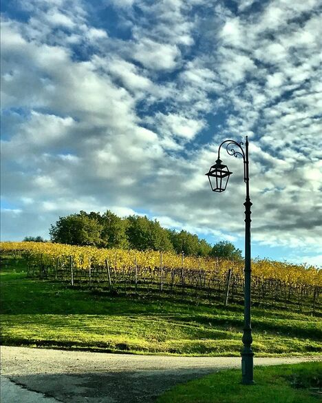 Borgo Condè - Wine Resort