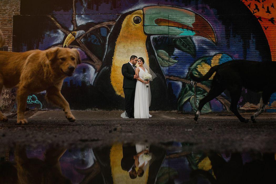 Daniel Araiza Photography