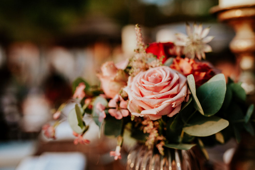 Laly Rose Décoration