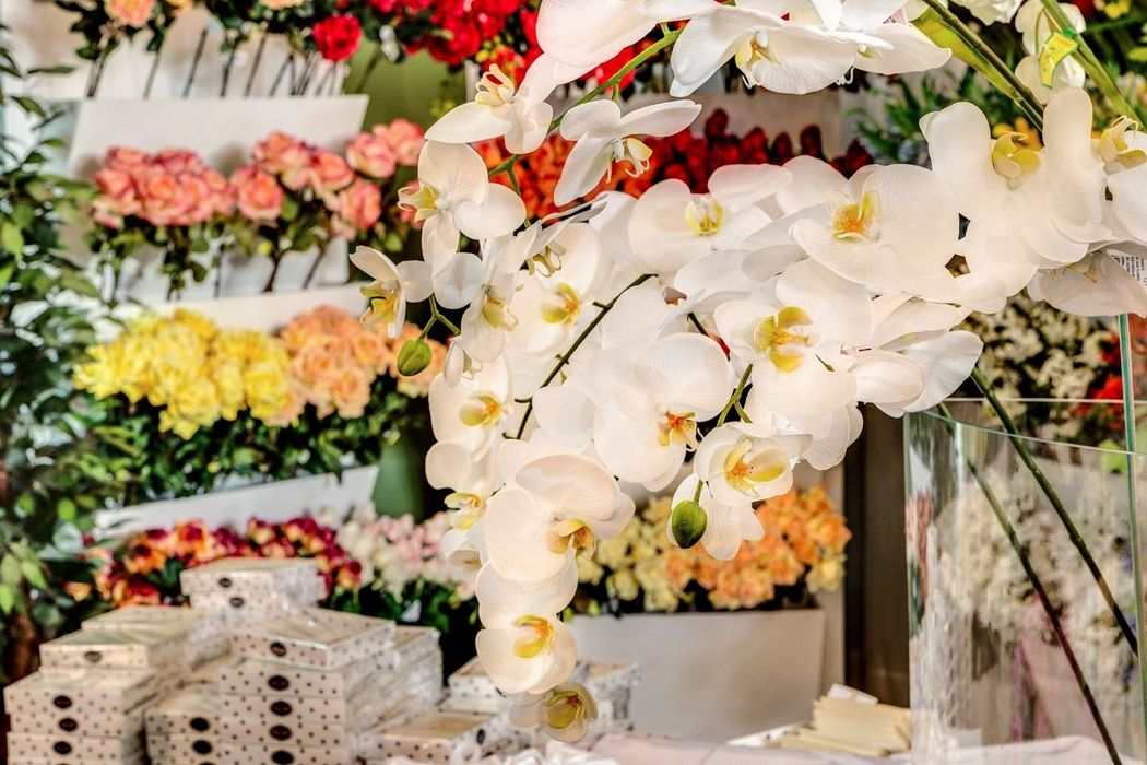 Amadeu Scarpelli Flower Designer