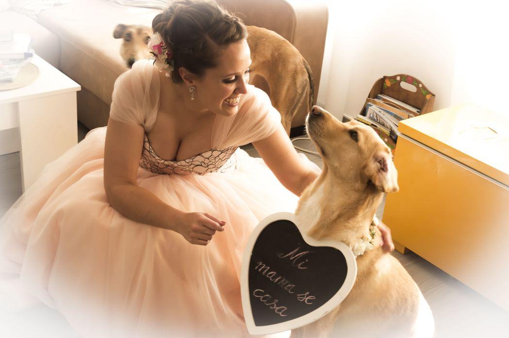 En los preparativos de boda con tu perro