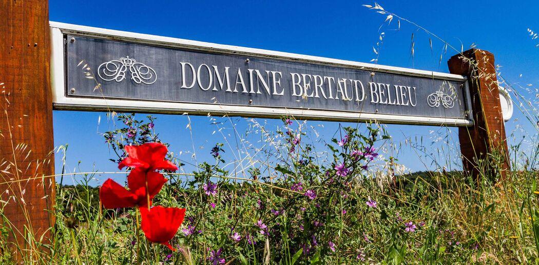 Domaine Bertaud Belieu