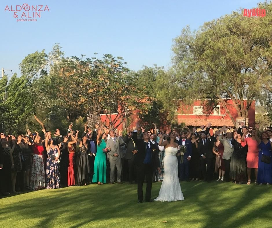 Aldonza & Alin Perfect Events