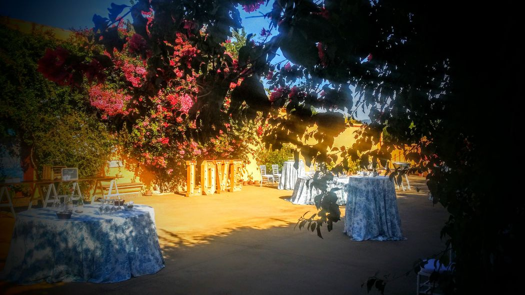 copa de bienvenida patio grande