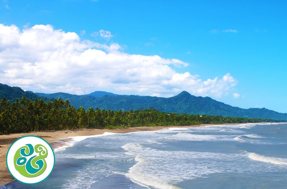 Guadalupe Beach & Ecolodge