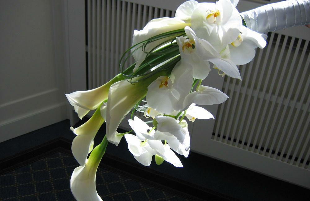 Blumen Schmidt