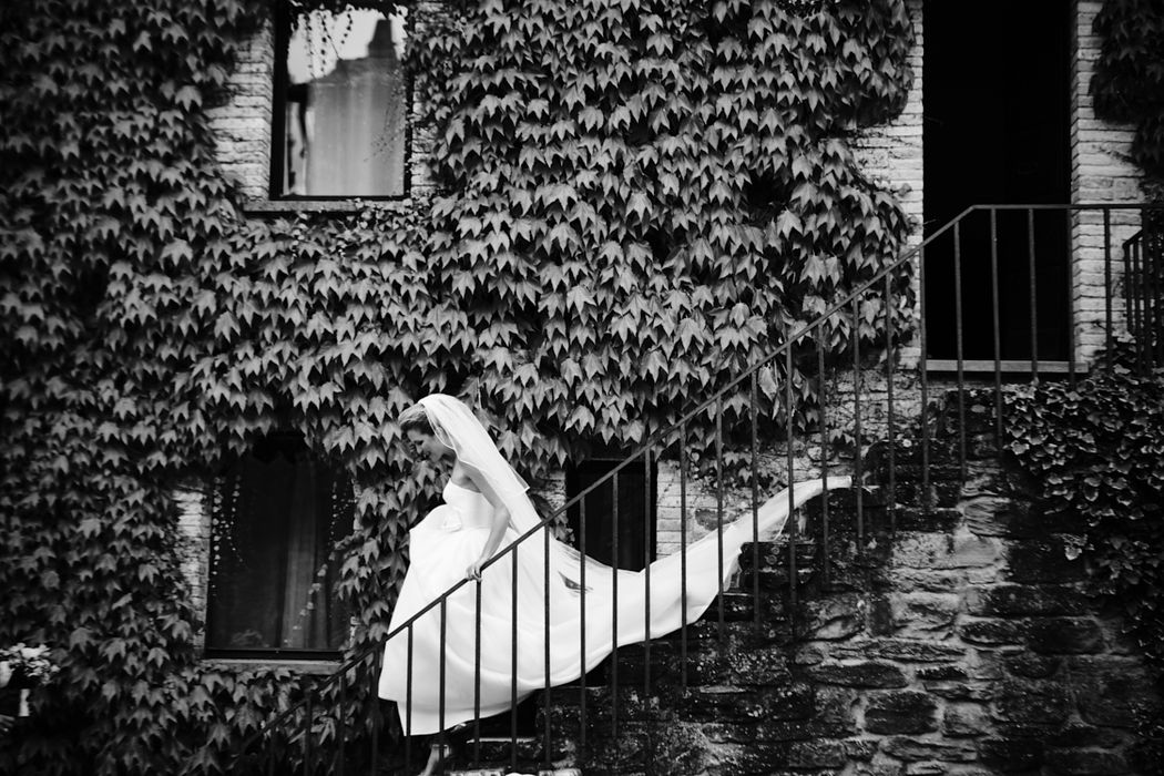 Jacob van Rozelaar Photography
