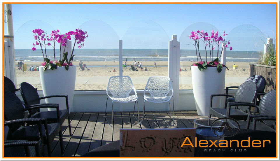 Alexaander Beach Club