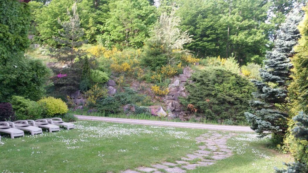 Les Hauts de l'Ermitage - Rebberg