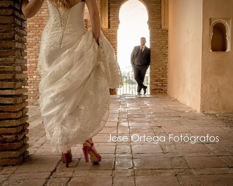 Jose Ortega Fotografos